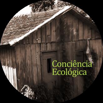 Consciência Ecologia Carpintaria do Pneu
